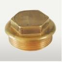 brass ppr plug